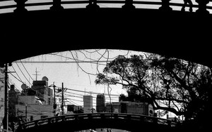 Silhouette Walking On The Bridge