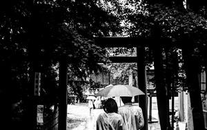 花園神社の傘