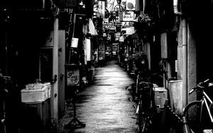 Wet Alleyway