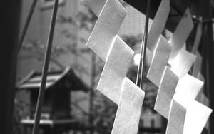 春日神社の紙垂