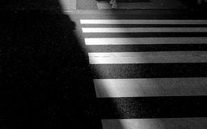 Girl At The Traffic Light