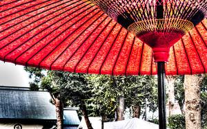 境内の赤い番傘