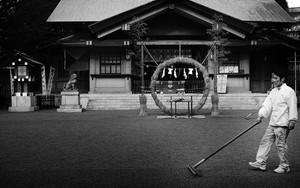 東郷神社の茅の輪