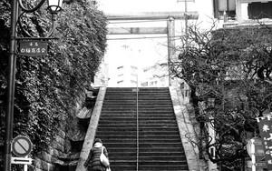 湯島天宮の階段