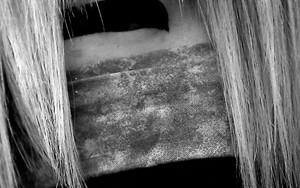 髪の間から覗く眼