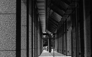 立ち並ぶ四角い柱
