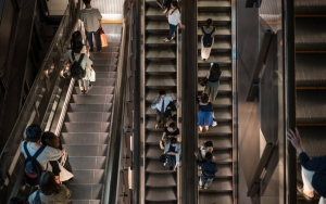 People Going Up And Down