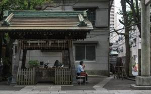 Resting In Shinto Shrine