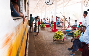 Bananas On The Platform