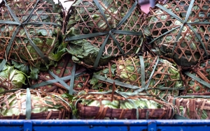 Heap Of Chinese Cabbages